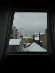 This was the view from my friend's sixth floor apartment on the European side after the snow calmed down a bit.